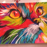 Gato en colores