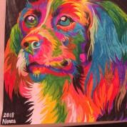 Perro en colores
